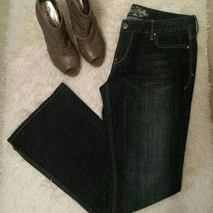 Stella  Low Rise Express Bootcut Jeans sz 12